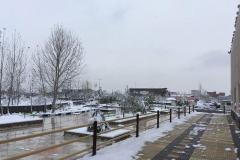 photo_2017-01-26_11-41-26