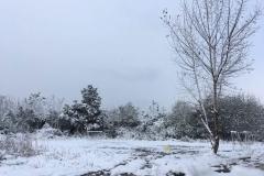 photo_2017-01-26_11-43-43